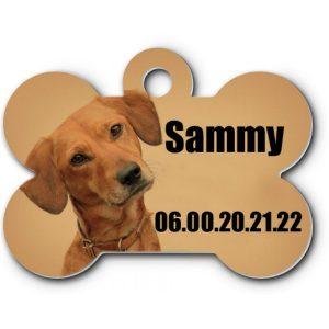 Medaille de collier pour chien à personnaliser
